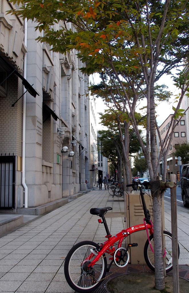 自転車のある風景①