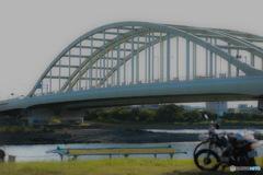 初夏の河川敷