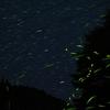 ホタルと星の海 1