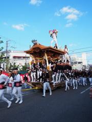 岸和田だんじり祭り 5