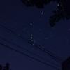 蛍の流星群