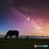 流星と牧場