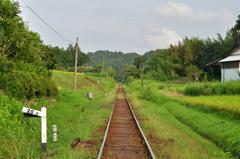 小湊鉄道 (1)