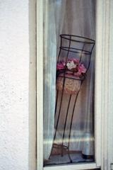 ちょっと気になった「窓辺の造花」①