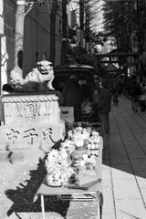 花園神社・4-1
