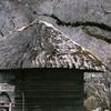 水車小屋(過去写真)