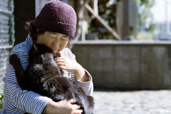 江ノ島の猫ちゃん・大好き