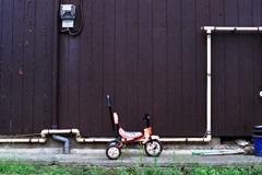 三輪車のある風景2-2・壁際の三輪車