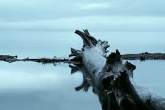 支笏湖と美笛川
