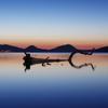 流木の竜と支笏湖温泉