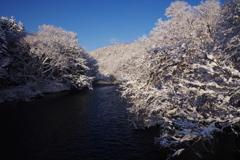 千歳の大雪