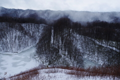 里山の冬景