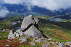 沼を見る岩