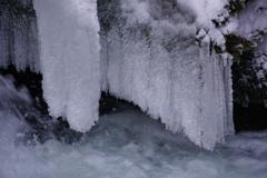 凍る飛沫は藤の花2