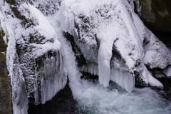 凍る飛沫は藤の花1