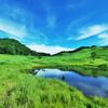夏の砥峰高原