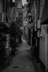 京都のろおじ 今