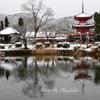 雪景色の多宝塔
