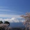 富士山春景色