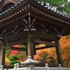 紅葉を求めて 雲辺寺