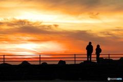 見上げる夕陽