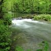 奥入瀬渓流 3