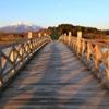 「鶴の舞橋」から岩木山