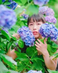 紫陽花ポートレート