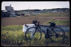 堺川サイクリングコースにて・・・