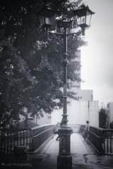 街灯・・・・
