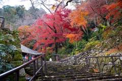 長谷寺の秋