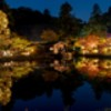 東山植物園の秋色
