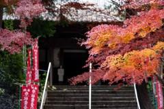 秋葉山慈眼寺の秋