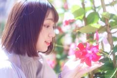 きれいな花だね~・・・