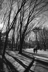 公園の二人・・・・