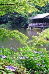 東山動植物園にて・・