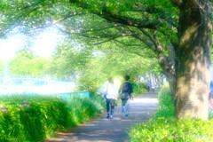 散歩道・・・・