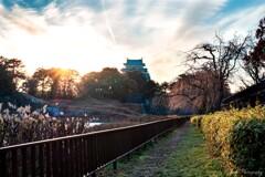 名古屋城夕景・・・