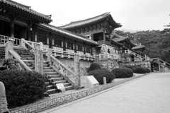 釜山2006