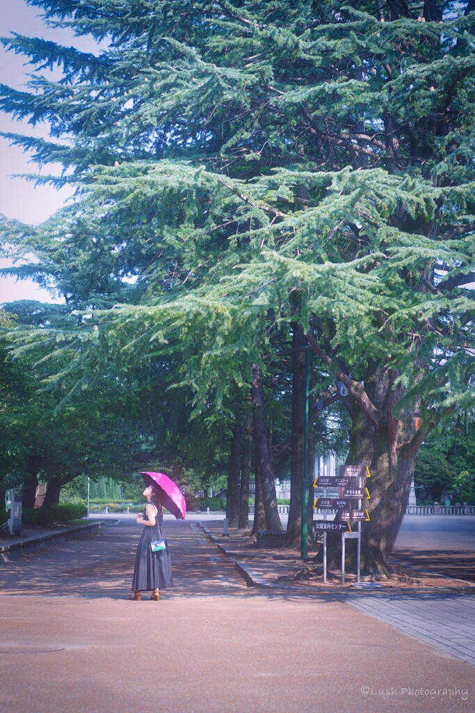 鶴舞公園・・・
