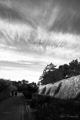 名古屋城・・・