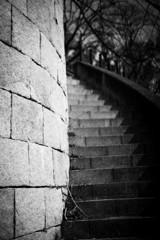 階段の先は・・・