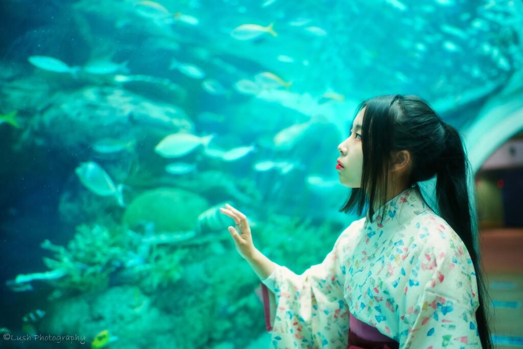 名古屋港水族館にて・・・・