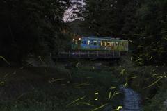 樽見蛍列車