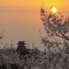 夕日と犬山城