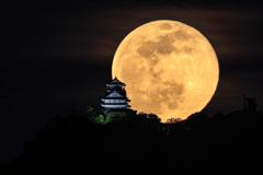 岐阜城と満月