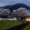 桜満開の高科駅
