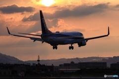 I like 737 ✈︎