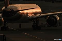 Thai Airways ✈️
