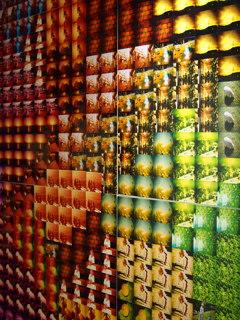 色鮮やかな写真が一面に貼られたエレベーターホール